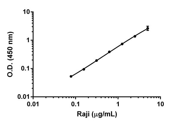 Example of ICAM-1 dynamic range in Raji cell lysates.