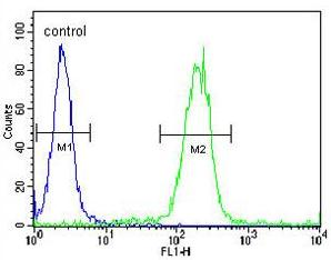 Flow Cytometry - Anti-Egr1 antibody - N-terminal (ab174509)