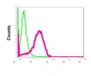 Flow Cytometry - Anti-GRASP65 antibody [EPR12439] - C-terminal (ab174834)