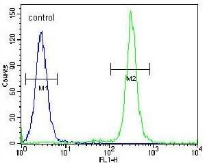 Flow Cytometry - Anti-TMEM165 antibody - N-terminal (ab174945)