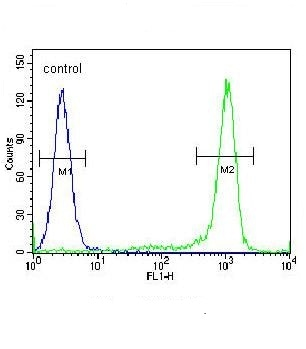 Flow Cytometry - Anti-KLF17 antibody - C-terminal (ab174956)
