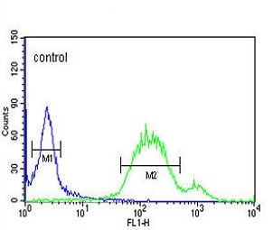 Flow Cytometry - Anti-Wnt5a antibody (ab174963)