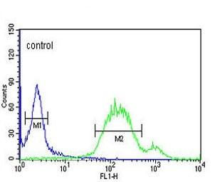 Flow Cytometry - Anti-Wnt5a antibody (ab174963)