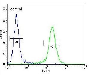 Flow Cytometry - Anti-ZDHHC2 antibody - N-terminal (ab174967)
