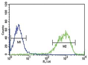 Flow Cytometry - Anti-EREG antibody - C-terminal (ab175118)