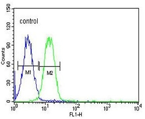 Flow Cytometry - Anti-Advillin antibody - N-terminal (ab175126)