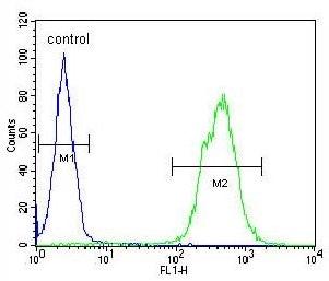 Flow Cytometry - Anti-TOX3 antibody (ab175129)