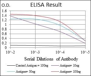 ELISA - Anti-RING1 antibody [8C12F4] (ab175149)