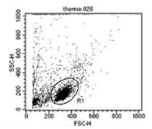 Flow Cytometry - Anti-CD2 antibody [TS218] - BSA and Azide free (ab175287)