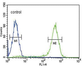 Flow Cytometry - Anti-SLC10A1 antibody - C-terminal (ab175289)