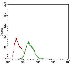 Flow Cytometry - Anti-Rex1 antibody [5E11E7] (ab175431)