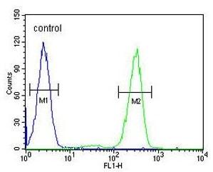 Flow Cytometry - Anti-Aftiphilin antibody - C-terminal (ab175484)