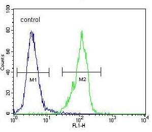 Flow Cytometry - Anti-Galanin antibody - C-terminal (ab175487)