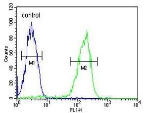 Flow Cytometry - Anti-MAP1S antibody (ab175503)