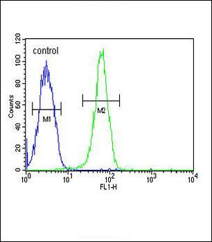 Flow Cytometry - Anti-KIF24 antibody - N-terminal (ab175527)