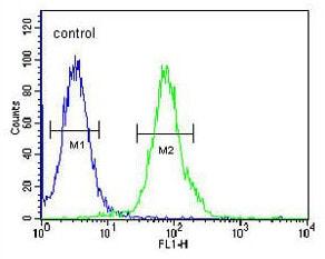 Flow Cytometry - Anti-RTKN2 antibody - N-terminal (ab175591)