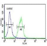 Flow Cytometry - Anti-TRIB2 antibody - N-terminal (ab175879)
