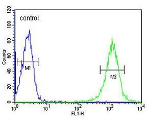 Flow Cytometry - Anti-B4GALT1 antibody - C-terminal (ab175887)