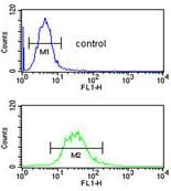 Flow Cytometry - Anti-CEP128 antibody (ab175959)
