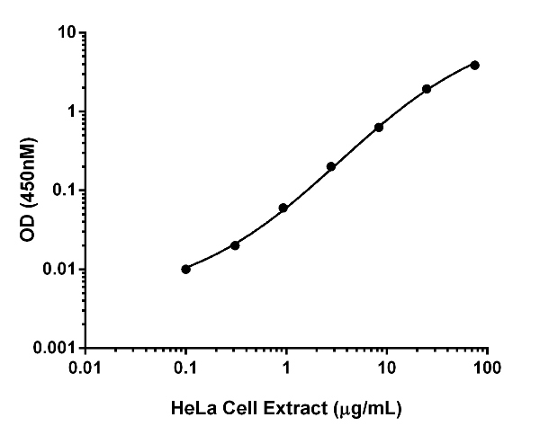 Titration of HeLa cell extract within the working range of the assay