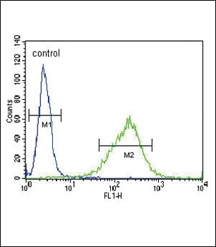 Flow Cytometry - Anti-GABA A Receptor alpha 2/GABRA2 antibody - C-terminal (ab176170)