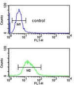 Flow Cytometry - Anti-RNase H2 subunit C antibody (ab176197)