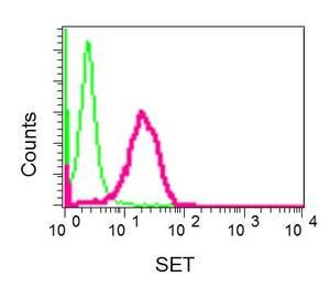 Flow Cytometry - Anti-SET/TAF-I antibody [EPR12972(B)] (ab176567)