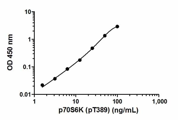 Typical recombinant protein standard curve