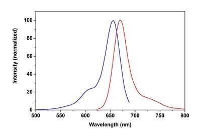 Cytopainter Phalloidin-iFluor 647 Reagent (ab176759)