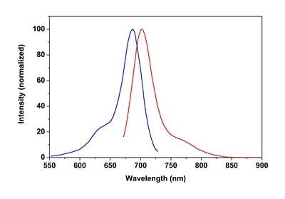 CytoPainter Phalloidin-iFluor 680 Reagent (ab176760)