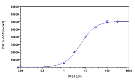 GABA Dose Response in WSS-1 cells measured with Cellular Membrane Potential Assay Kit (Fluorometric-Orange) (ab176764)
