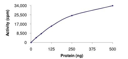 Functional Studies - Recombinant human LRRK2 protein (ab177261)