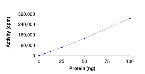 Functional Studies - Recombinant human AKT3 (mutated G171R) protein (ab177263)