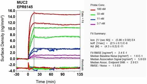 OI-RD Scanning - Anti-MUC2 antibody [EPR6145] - Low endotoxin, Azide free (ab177278)