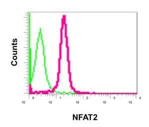 Flow Cytometry - Anti-NFAT2 antibody [EPR2431(N)(B)] (ab177464)