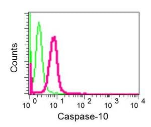 Flow Cytometry - Anti-Caspase-10/CASP-10 antibody [EPR10890] (ab177475)