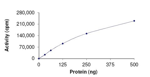 Functional Studies - Recombinant human PCTAIRE1 protein (Active) (ab177586)