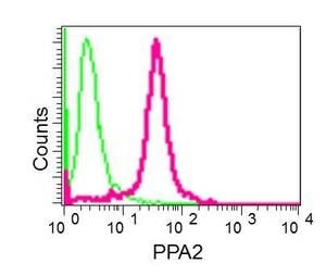 Flow Cytometry - Anti-PPA2 antibody [EPR13087(B)] (ab177935)