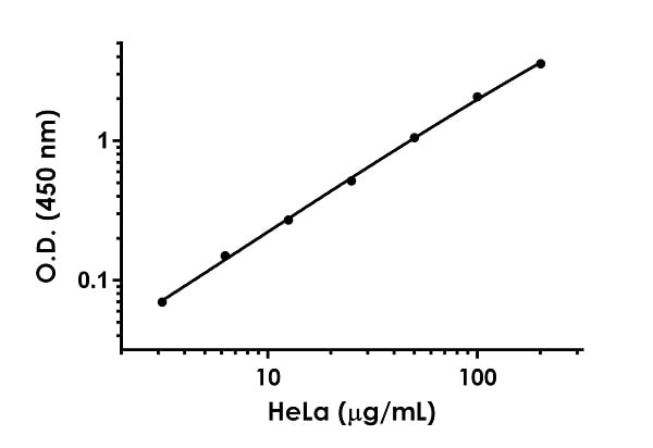 Example of NADH Dehydrogenase standard curve.