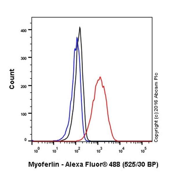 Flow Cytometry - Anti-Myoferlin antibody [EPR18887] (ab178386)