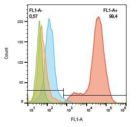 Flow Cytometry - Anti-Cytokeratin 19 antibody [A53-B/A2] (FITC) (ab178543)