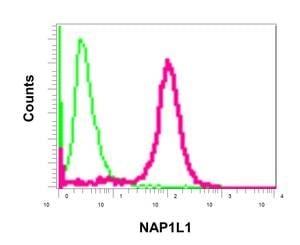 Flow Cytometry - Anti-NAP1L1 antibody [EPR11845] (ab178687)