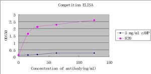 ELISA - Anti-cAMP antibody [EP8471] - BSA and Azide free (ab179459)