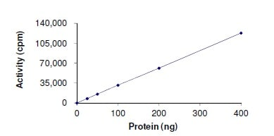 Functional Studies - Recombinant human LTK protein (ab179494)