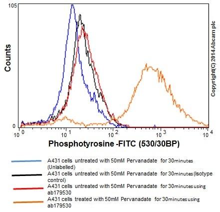 Flow Cytometry - Anti-Phosphotyrosine antibody [EPR16871] (ab179530)