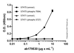 ELISA - Anti-Phosphotyrosine antibody [EPR16871] (ab179530)