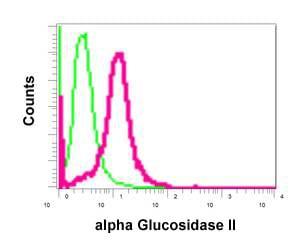 Flow Cytometry - Anti-GANAB antibody [EPR12377(B)] (ab179805)