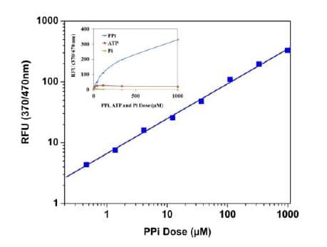Pyrophosphate standard curve