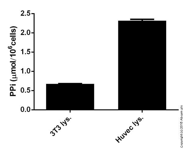 Functional assay - 179836 Pyrophosphate Assay Kit II (Fluorometric)