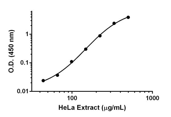 Example of HeLa cell lysate dynamic range.